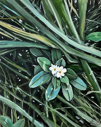 Hidden Flowers - (24x30)