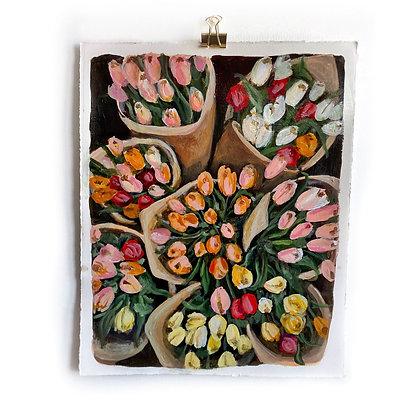 Tulip Bouquets (11 x 14)