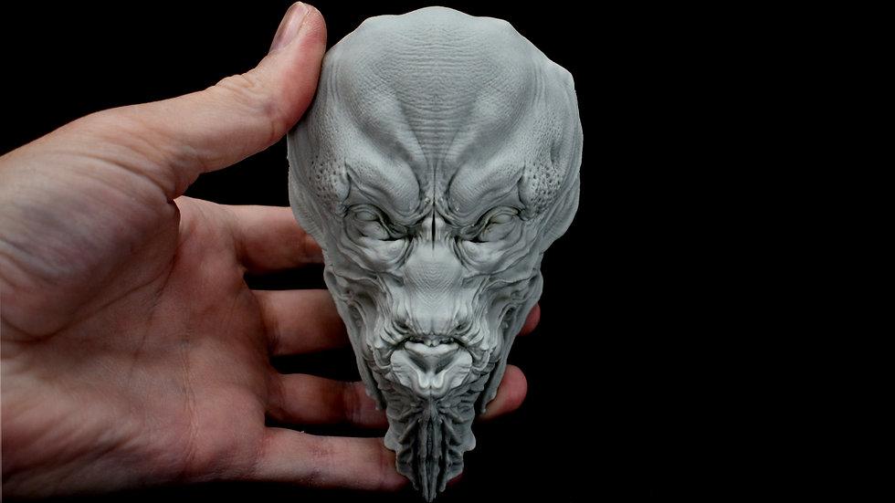 Shield Head Plaque