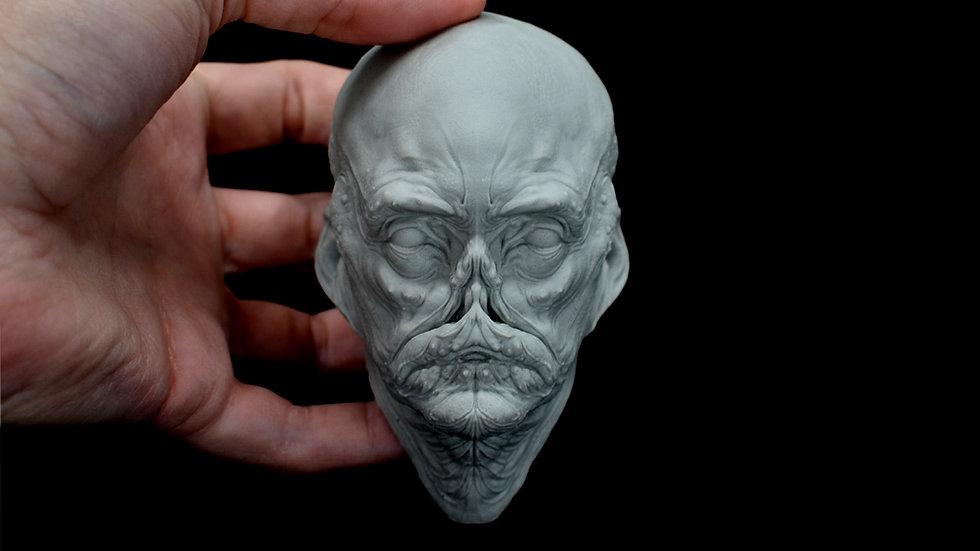 Aqua Head Plaque