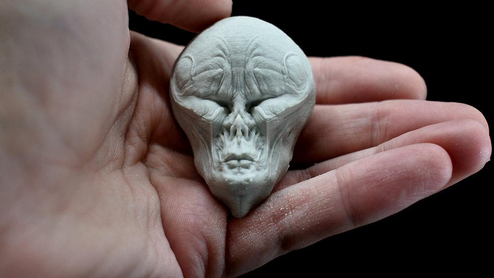 Meat Head Magnet