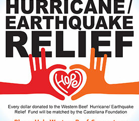 Hurricane / Earthquake Relief Fund