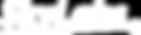 SkyLabs logo (white)(White) (2)_edited.p