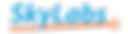 SkyLabs logo (original).png