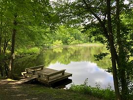 ids pond.png