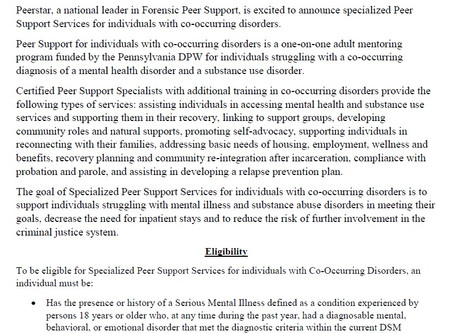 Specialized peer support for individuals with co-occurring disorders