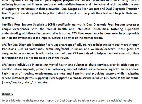 Dual Diagnosis Peer Support