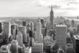 ニューヨーク のコピー_edited.jpg