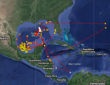 Her latest tracking information was obtained from GHRI on March 6 2021. She can be followed at ghritracking.org