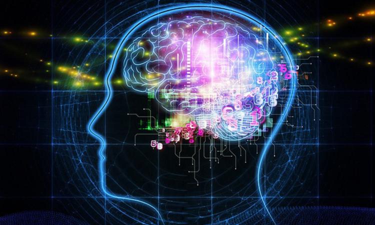 8-facons-dont-la-technologie-a-altere-le-fonctionnement-de-notre-cerveau-une.jpg