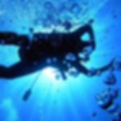 diver-7-sq.jpg