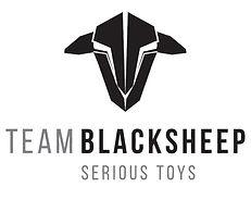 120-1203958_team-blacksheep-mini-race-quads-and-fpv-desert_edited.jpg