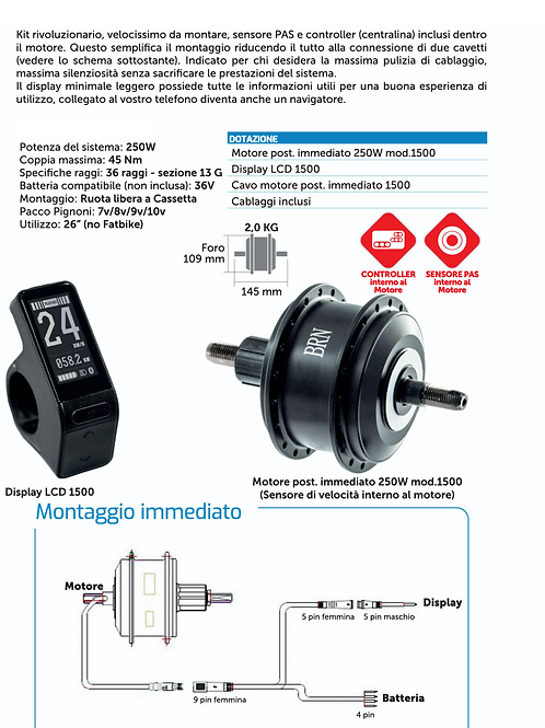 kit motore posteriore immediato 250W