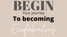 Begin...your journey to becoming ECOFABULOUS
