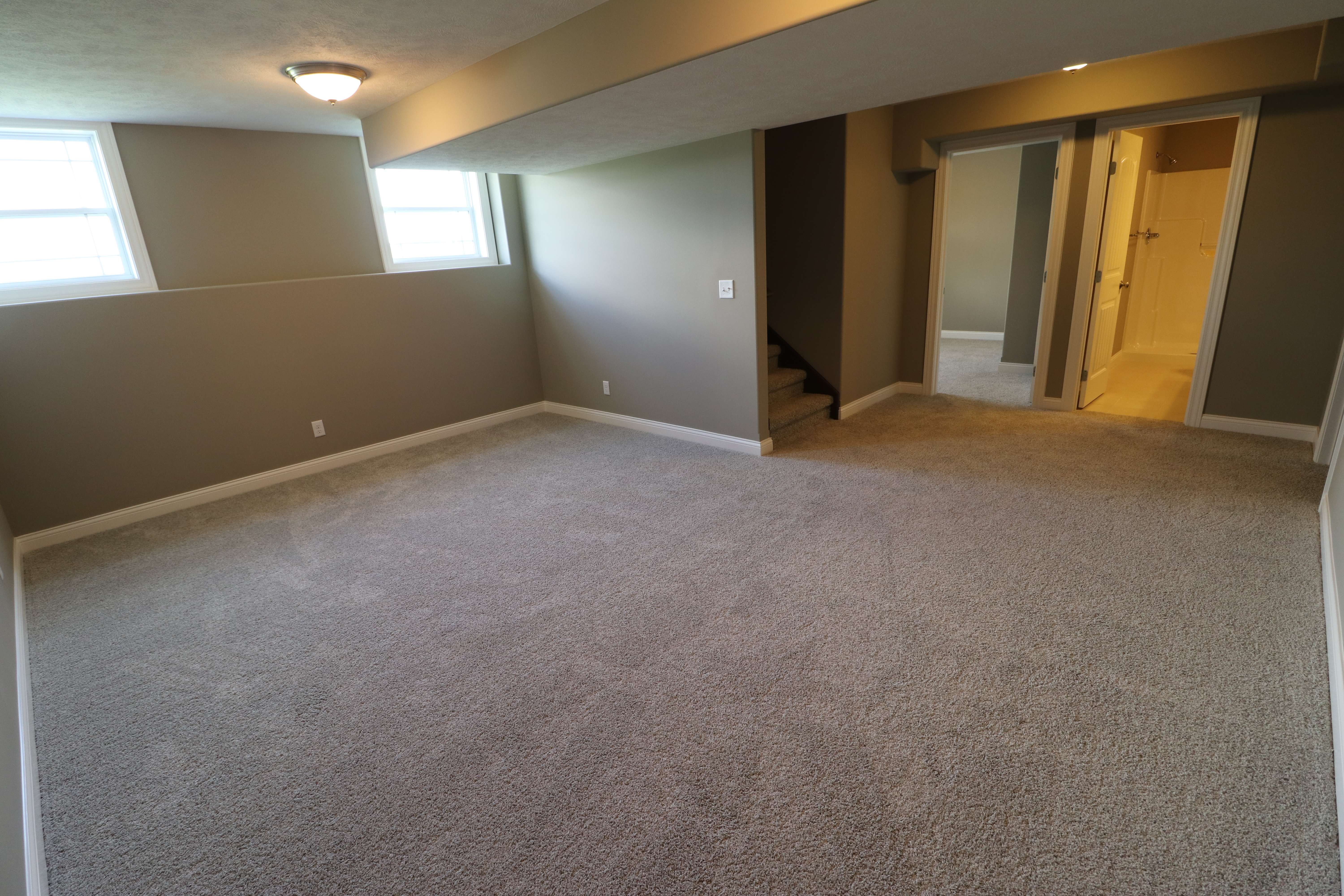 House for sale in the Dunlap peoria area finished basement with bathroom