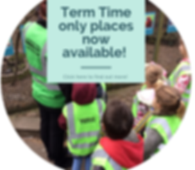 Term Time only places now available!.png