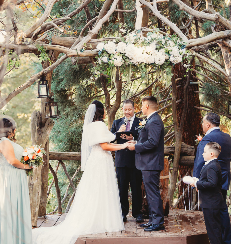 Jeremy and Jasmine wedding-2050.JPG