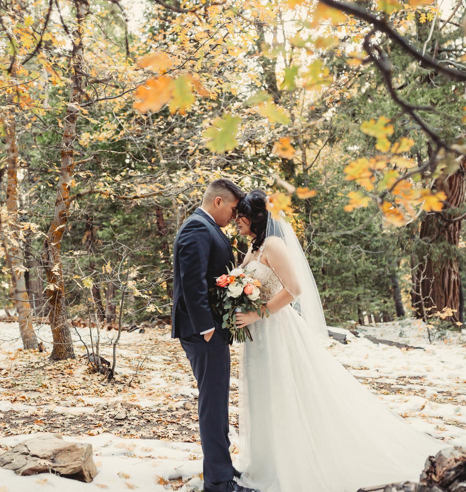 Jeremy and Jasmine wedding-1714.JPG