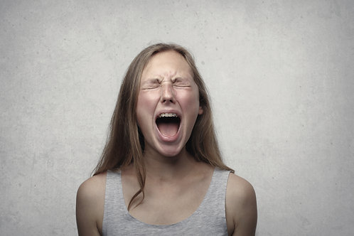 """Video seminaras """"Emocijų raiška ir slopinimas"""""""
