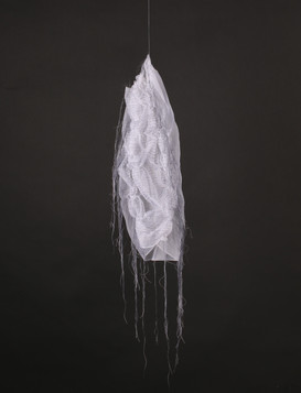 Tissues Impression #5