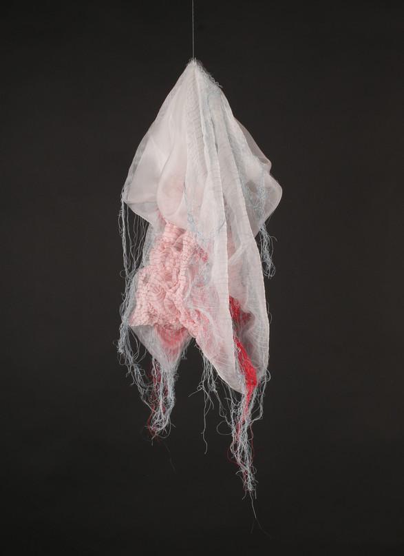 Tissues Impression #7