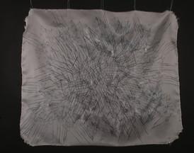 Tissues Portrait #6
