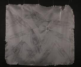 Tissues Portrait #2