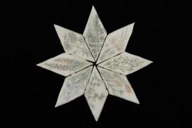 Wildflowers of Alberta tablets