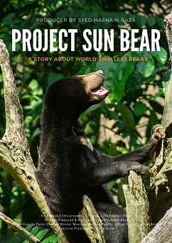 Project Sun Bear poster.png