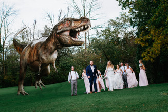 The Birkman bridal party running from Trex. Taken at the Timber Pointe Golf Club in Poplar Grove, Illinois.