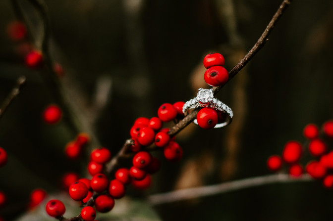 Allison's beautiful engagement ring amongst the berries at the Volo Bog in Volo, Illinois.