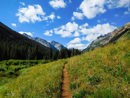 Aspen Wilderness