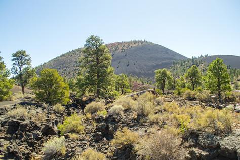 A Hidden Gem near Flagstaff