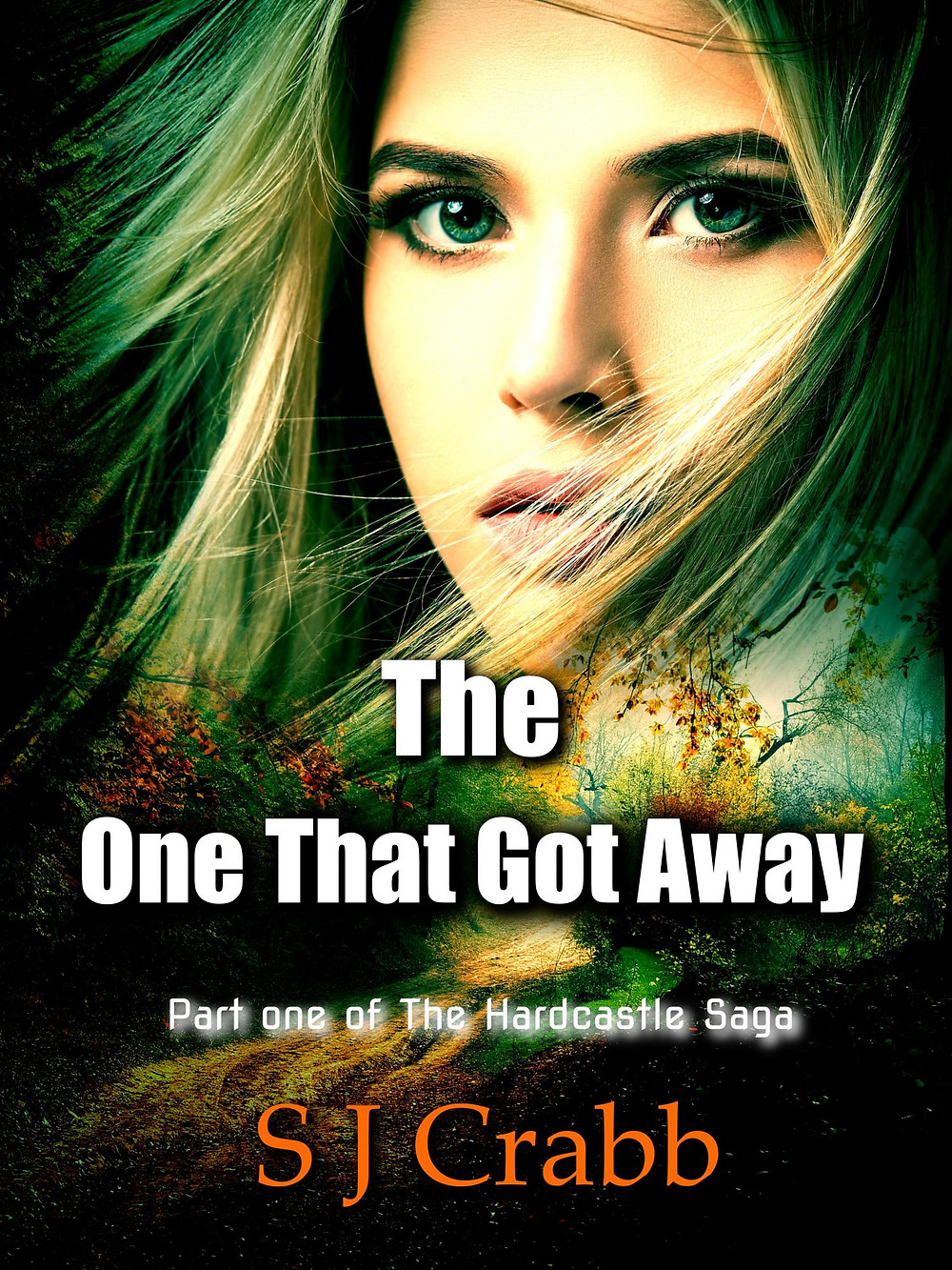 Take a look at the new cover for The One That Got Away. I felt that it was in need of a professionally designed cover and I am so pleased with the results. Thanks to Ravenborn for such a great image. I am going to offer it for free next weekend so for anybody that still hasn't read it download it then and let me know what you think.