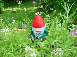 Gnome is hiding