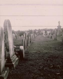 Flickr - graves1