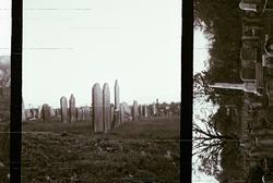 Flickr - graves2
