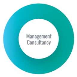 Our Expertise_Management Consultancy.png