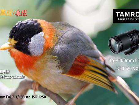 Tamron 150-500mm長距兼備機動性!
