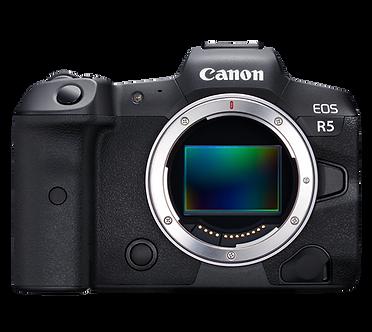 Canon EOS R5淨機身預售$30,880