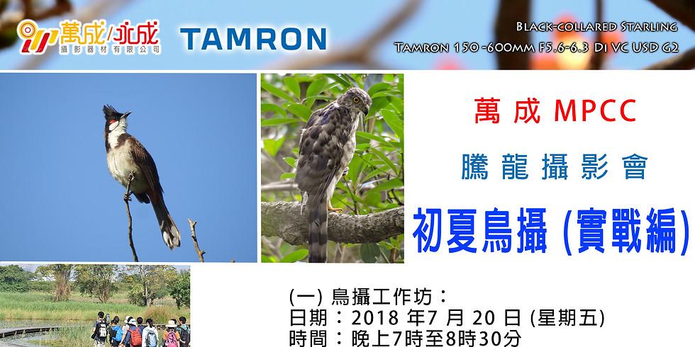 Tamron — 初夏鳥攝 (實戰編)