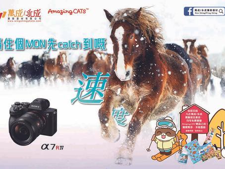 「攝影心度」 ,Sony各項主打產品