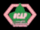 hashtag-cap-logo (1).png