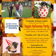 Doggy Halloween Party