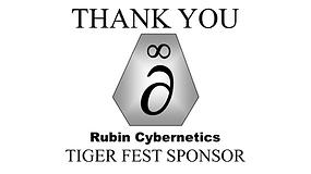 Banner Rubin Cybernetics (1).PNG