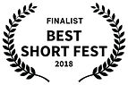 FINALIST-BESTSHORTFEST-2018.jpg