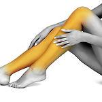 legs-lower&knees.jpg