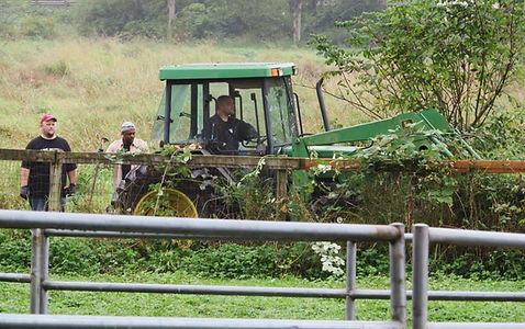 Image of men clearing vegetation with a tractor.