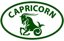 Capricorn Sun Sign: Takes Responsibility Competently and Consistently