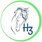 Image of H3 logo